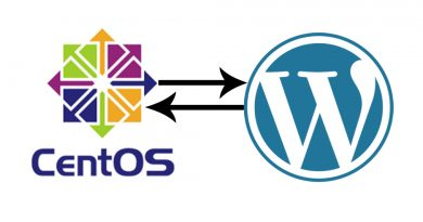 Lệnh tải Source Wordpress tự động trên Linux 3